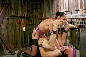 Latex dominates caged sub...